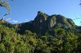 parc-national-marojejy-sava-madagascar